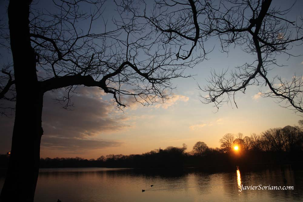 2/22/2012. Brooklyn, NYC. A gorgeous sunrise in Prospect Park. Photo by Javier Soriano/www.JavierSoriano.com
