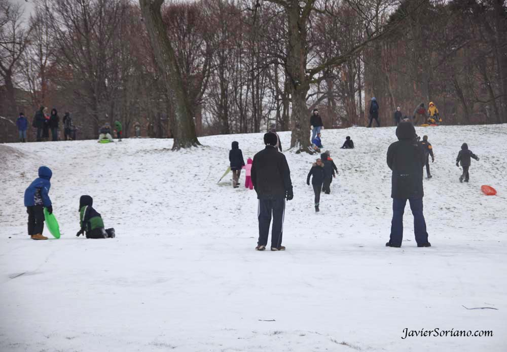 1/21/2012. Prospect Park. Brooklyn, New York City - First snowfall of the Winter season of 2012. Families playing with snow. Photo by Javier Soriano/www.JavierSoriano.com