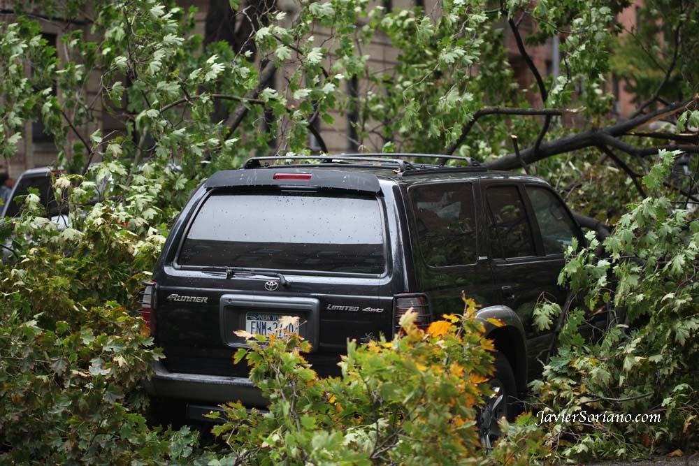 10/29/2012. Prospect Park. Brooklyn, NYC. Hurricane Sandy. Photo by Javier Soriano/www.JavierSoriano.com