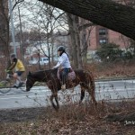 12/12/2012. Prospect Park. Brooklyn, NYC. Riding a horse. It was a special day. 12/12/12 only happens once every 100 years. Photo by Javier Soriano/www.JavierSoriano.com