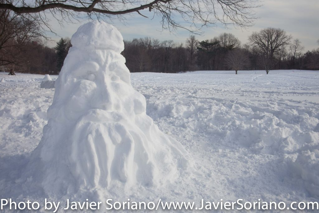 1/25/2016 NYC - We got snow on 1/23/2016. Today is a beautiful day. This is Prospect Park. Somebody made this ice sculpture.  Photo by Javier Soriano/www.JavierSoriano.com