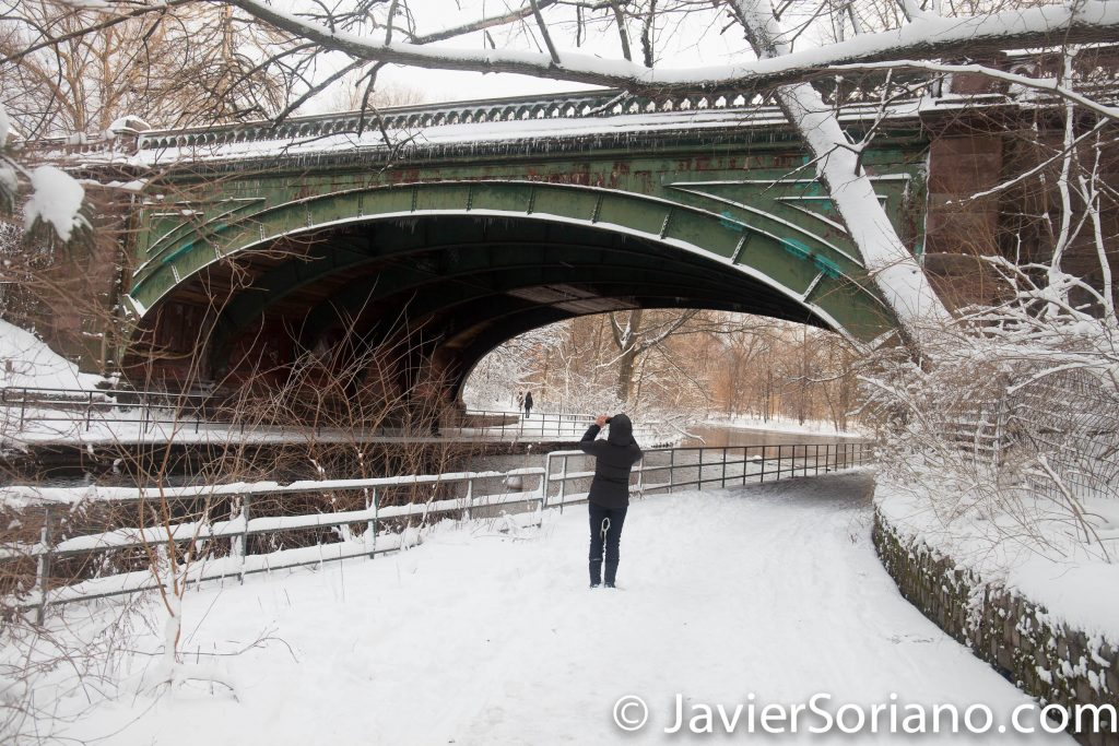 Afternoon. 2/9/2017 NYC - Winter storm Niko in Prospect Park, Brooklyn. Photo by Javier Soriano/www.JavierSoriano.com