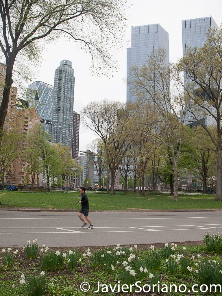 "4/22/2017 NYC - Flowers in Central Park and a man running.  Today was Earth Day. I took this picture before the ""March For Science."" Photo by Javier Soriano/www.JavierSoriano.com"