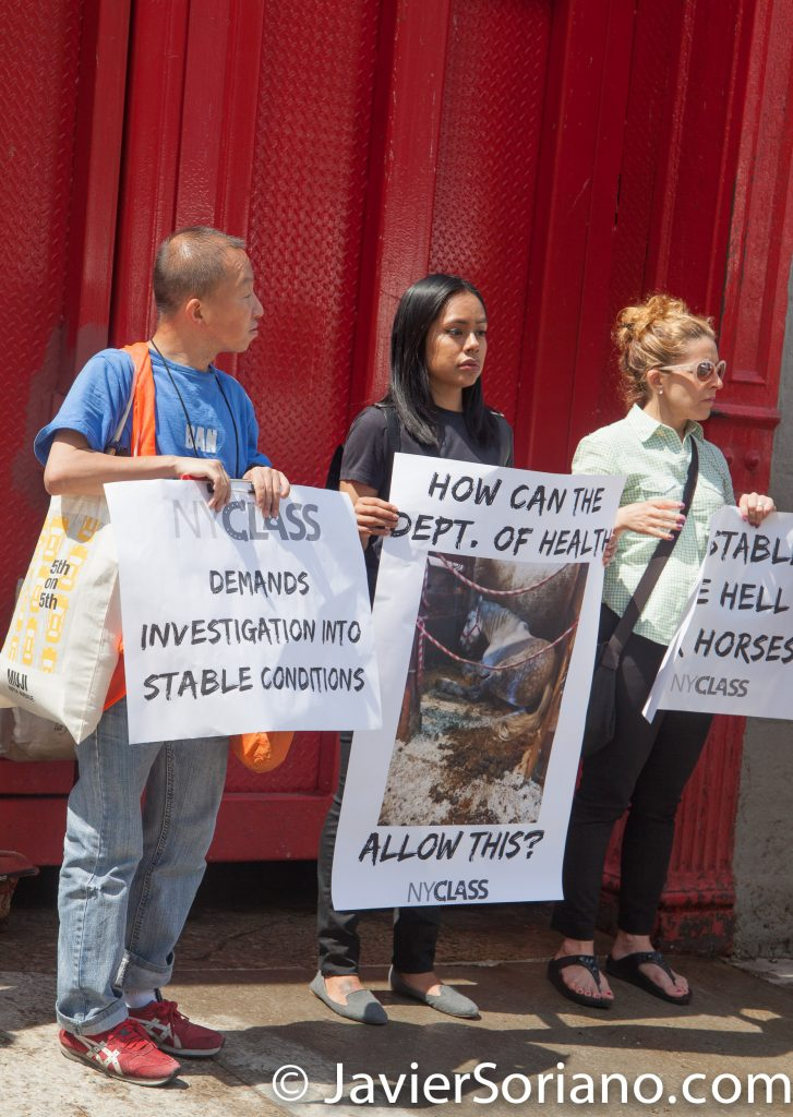Friday, June 2, 2017 Manhattan, NYC - Rally in New York City to protect horses. Photo by Javier Soriano/www.JavierSoriano.com