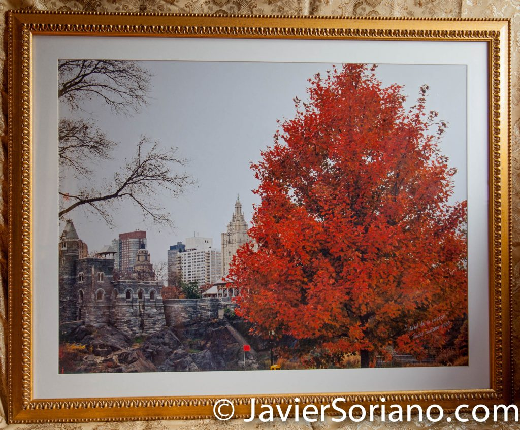Central Park, NYC. Original framed photograph by Javier Soriano.