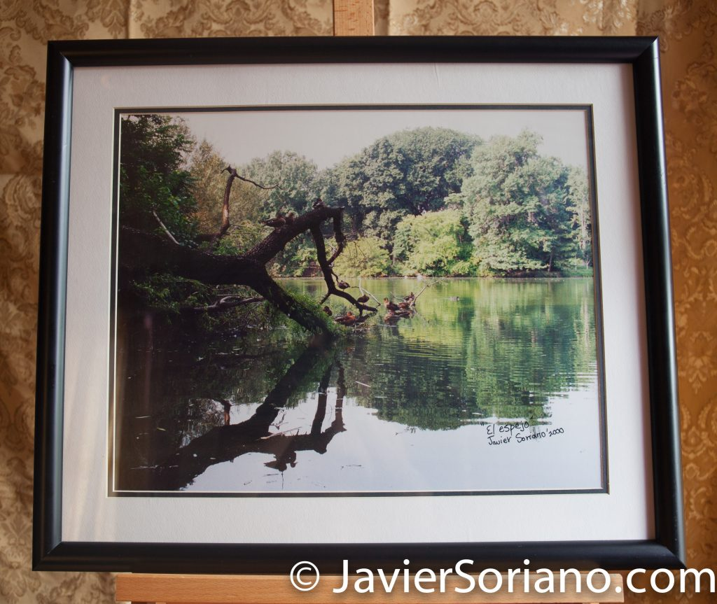 Central Park, NYC. Original framed photograph by Javier Soriano. Size: 20x24.