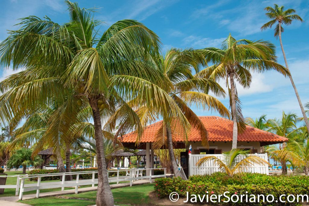 9/15/2017. Melia Coco Beach Resort. Rio Grande. Puerto Rico.  Today is a very special day. A beautiful couple is having their wedding today. We traveled from New York City to Puerto Rico for this special occasion.   Photo by Javier Soriano/www.JavierSoriano.com