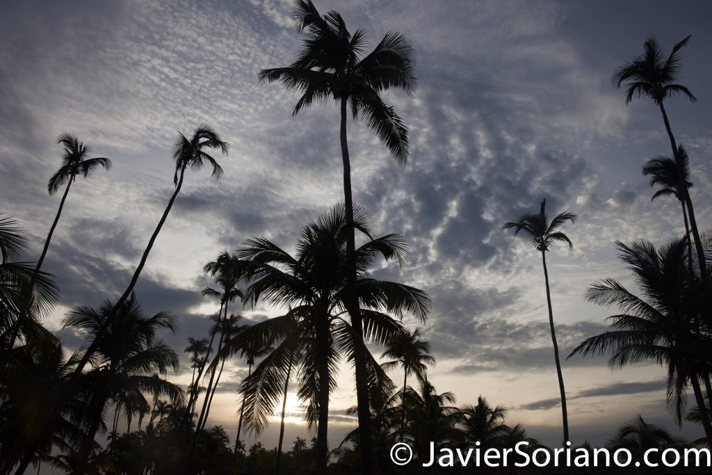 9/14/2017. Melia Coco Beach Resort. Rio Grande. Puerto Rico.  I did not see a colorful sunrise. Maybe tomorrow. It was still a beautiful morning.   Photo by Javier Soriano/www.JavierSoriano.com