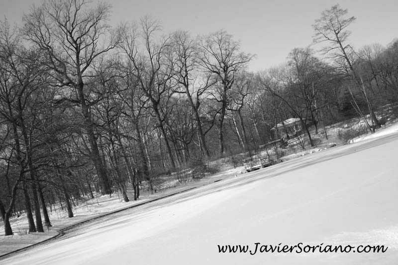 12/28/2010. Prospect Park. Brooklyn, NYC. It's Winter. I love snow! Photo by Javier Soriano/www.JavierSoriano.com