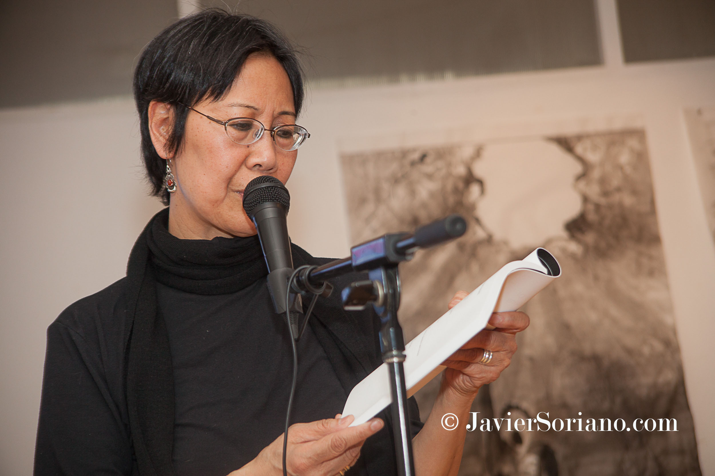 1/23/2015 NYC – Fay Chiang celebrating her 63rd birthday. Photo by Javier Soriano/www.JavierSoriano.com