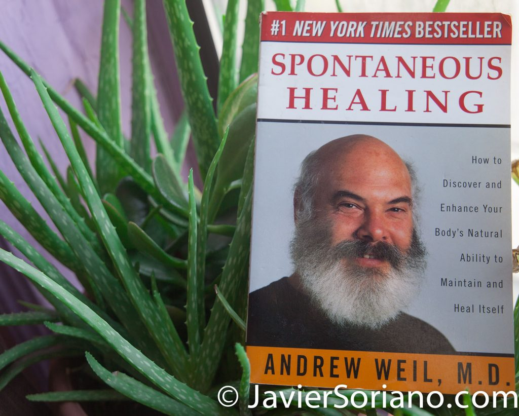 "12/31/2017 - Reading the book by Andrew Weil M.D.: ""Spontaneous Healing: How to Discover and Embrace Your Body's Natural Ability to Maintain and Heal Itself."" <br /> ""The body can heal itself. Spontaneous healing is not a miracle but a fact of biology--the result of the natural healing system that each one of us is born with. Drawing on fascinating case histories as well as medical techniques from around the world, Dr. Andrew Weil shows how spontaneous healing has worked to resolve life-threatening diseases, severe trauma, and chronic pain.""  Photo by Javier Soriano/www.JavierSoriano.com"