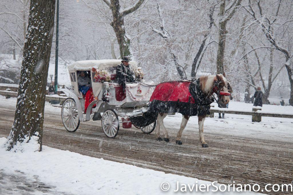 12/09/2017. NYC -Snowfall in Central Park. Nevada en el Parque Central de la Ciudad de Nueva York.  Carriage horses must be ban in New York City.  Los caballos de tiro deben ser prohibidos en la ciudad de Nueva York.  Photo by Javier Soriano/www.JavierSoriano.com