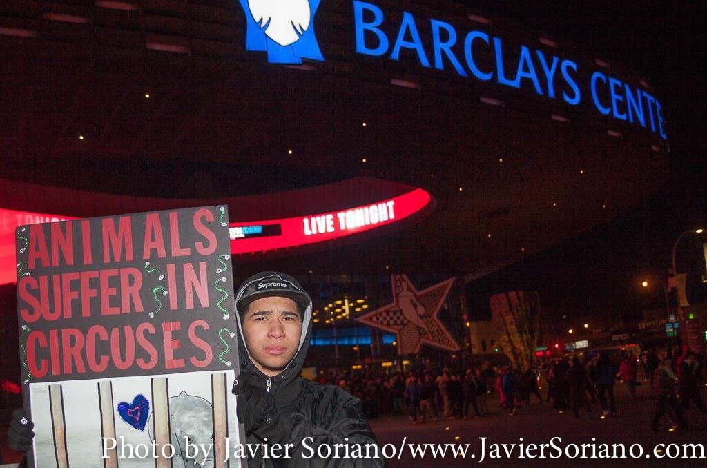 19/2/2015 NYC - Activistas por los derechos de los animales en el Barclays Center de Brooklyn, protestan contra el Ringling Bros y Barnum y Bailey Circus por el uso y abuso de animales.  Photo by Javier Soriano/http://www.JavierSoriano.com/