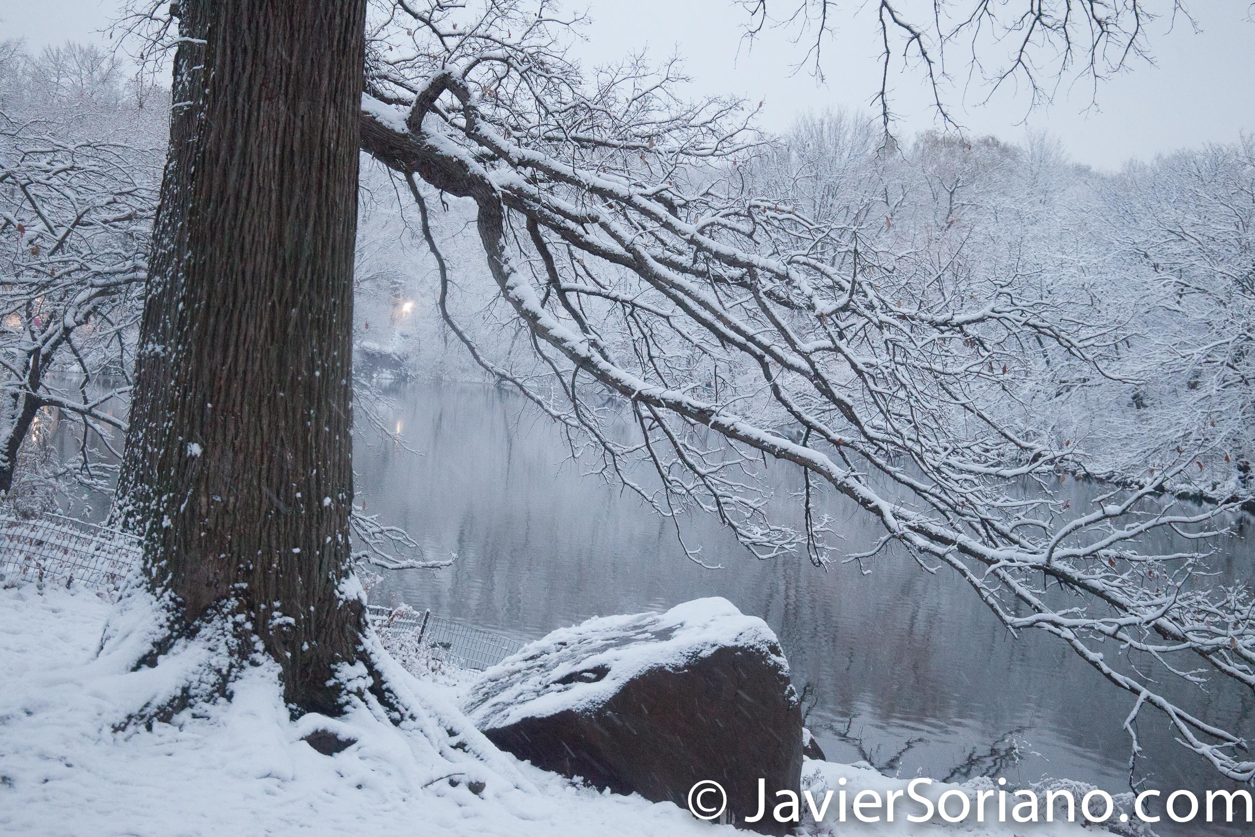 12/09/2017. NYC -Snowfall in Central Park. Nevada en el Parque Central de la Ciudad de Nueva York. Photo by Javier Soriano/www.JavierSoriano.com