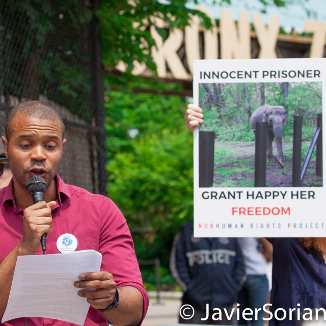 Bronx, New York City. Saturday, June 1, 2019 – Rally in support of Happy's freedom. Happy is a wild-born elephant held alone in captivity at the Bronx Zoo. The rally was organized by the Nonhuman Rights Project and it was joined by Change.org, CompassionWorks International, Voters For Animal Rights, In Defense of Animals, and Animal Cruelty Exposure Fund. During the rally, NhRP attorney gave updates on their litigation on behalf of Happy and other efforts to obtain rights for autonomous nonhuman animals. Activists called for recognition of Happy's fundamental rights and her transfer to sanctuary. Credit: Photo by Javier Soriano/www.JavierSoriano.com