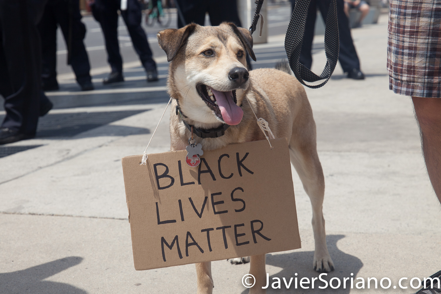 "Saturday, June 6, 2020. Brooklyn, New York City – Thousands of New Yorkers tell NYC Mayor Bill de Blasio: DEFUND THE NYPD! This love says: ""Black Lives Matter"" Photo by Javier Soriano/www.JavierSoriano.com"
