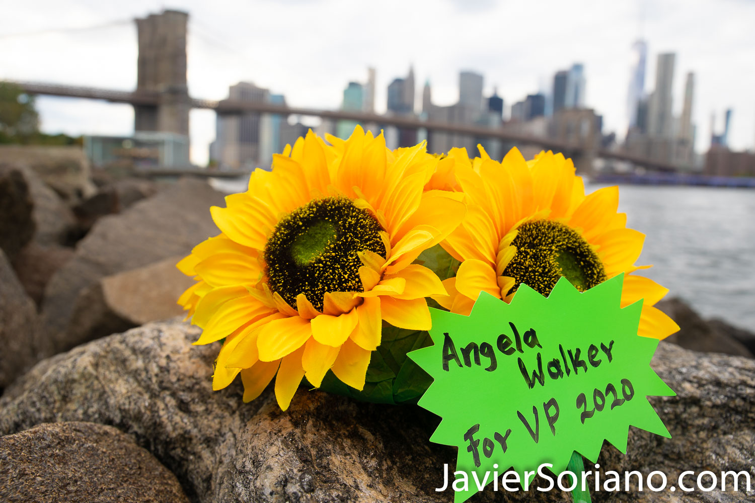 Angela Walker is the Vice President nominee of the Green Party USA in 2020. More info: HowieHawkins.us I took this photo in the Brooklyn Bridge Park, Brooklyn; New York City. Photo by Javier Soriano/www.JavierSoriano.com
